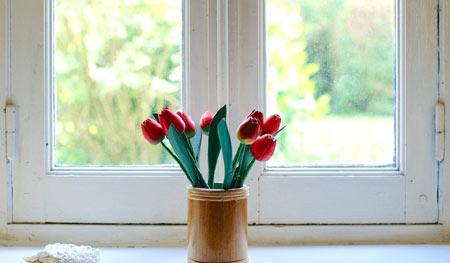 travaux fenêtre maison